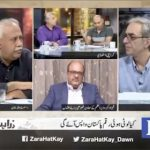 "ZHK: ""Forced disappearances,Pakistan's stolen assets"""