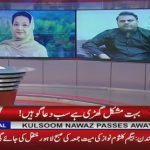 Fawad: Hassan & Hussain can come to Pakistan by getting a pre-arrest bail through courts