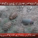 Police foils terrorist attack in Banu
