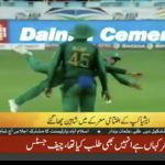 Asia Cup: Pakistan beat Hong Kong by 8 wickets