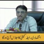 Finance Minister Asad Umar to chair ECC meeting today