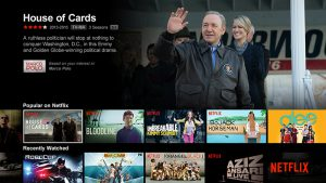 "Netflix: a new ""go to"" escape for every adult."