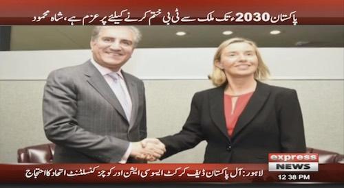 FM Shah Mehmood reaffirms Pakistan's commitment to eradicating TB