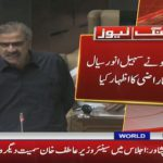 Bilawal Bhutto takes notice of Sohail Anwar Sial statement against MQM