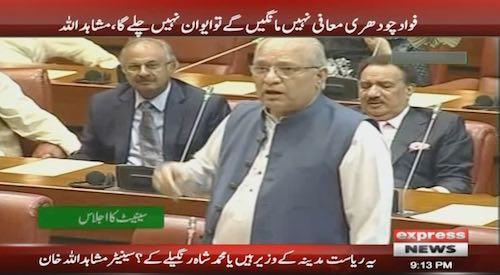 Senator Mushahidullah seeks apology from Fawad Ch for 'derogatory remarks'