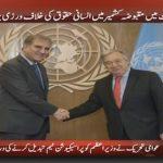 Pakistan's Qureshi, UN chief discuss regional issues, Kashmir conflict