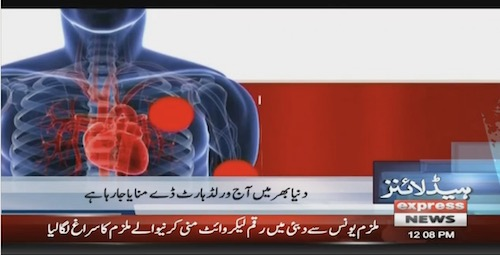 World Heart Day: Decode the common heart tests for a healthy life