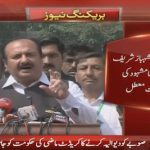 Rana Mashood's PML-N membership suspended
