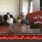 Opposition leader Shehbaz Sharif meets Khurshid Shah
