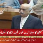 Khurshid Shah: Parliament is 'mother' of all state institutions