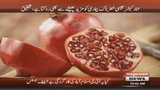 Pomegranate can help prevent cancer from spreading, says research