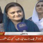 Maryam Aurangzeb claims PML-N leader Nawaz Sharif is a true leader