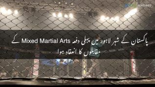 International Mixed Martial Arts competition held in Lahore for the first time