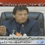 Afghan issue only to be resolved by talks: Prime Minister Imran Khan