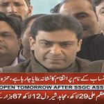 We are being victimised on the name of accountability, says Hamza Shahbaz