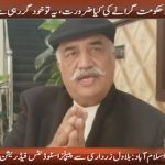 We dont need to do anything to Imran government, it'll fall on its own feet, says Khurshid Shah