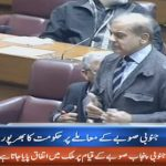 We will support government for South Punjab: Shehbaz Sharif