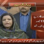 Government has put 17% tax on everything: Nafeesa Shah