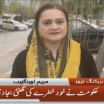 Government itself has hit the wrong nail: Maryam Aurangzeb