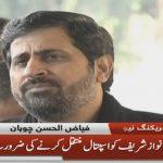 Fayyaz Ul Hassan says Nawaz does not need medical assistance