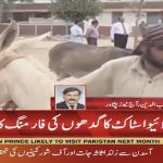 KPK government to start donkey farming