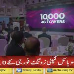 Zong completed its 10 years