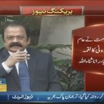 Opposition should be united to confront the 'Tabdeeli' regime, says Rana Sanaullah