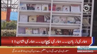 4th Mother Language Literature Festival kicks off in Islamabad