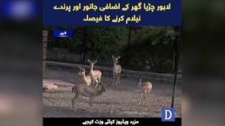 Great wildlife display to be held across zoos in Punjab