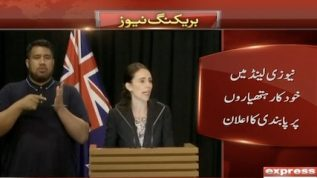NZ bans sale of assault weapons