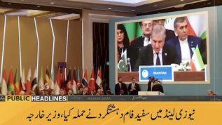 The attack was extremist terrorism: FM Qureshi