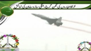 Pakistani army displayed its skills at Pakistan Day