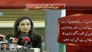 New interior minister appointment depicts Khan's extremist mind: Sherry Rehman
