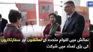 Pakistani Truck Art at UNs culture show