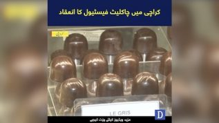 A Treat for Chocolate Lovers