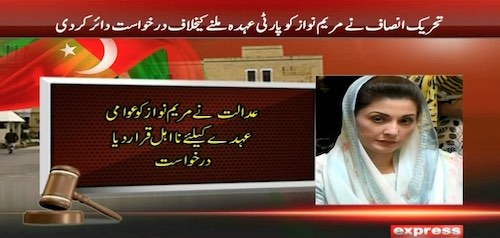 PTI petitions ECP against Maryam Nawaz's appointment as PML-N VP