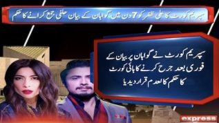 Ali Zafar has to submit witness report in 7 days