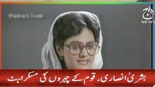 Career of Bushra Ansari