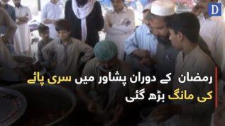 Sari Paye takes Peshawaris by storm