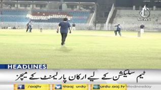 Pakistan To Parliamentarians Cricket World Cup