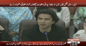 Celebrities Join Civil Society For Farishta