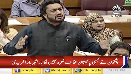 Pashtuns Never Use Anti-Pakistan Slogan: Shehryar Afridi