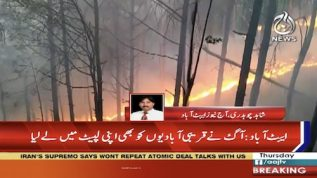 Fire erupts in Abbottabad forest