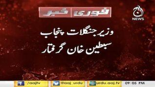 NAB arrests Sibtain Khan minister for forest Punjab