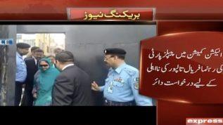 PTI seeks Faryal Talpur's disqualification from ECP