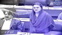Parliamentarians adorn Budget debate with lyrical touch
