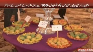 Mango festival at Agriculture University in Faisalabad