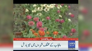 Heavy rainfall in various cities of Punjab