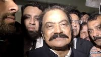 I believe in defiance, to challenge the culprit: Rana Sana