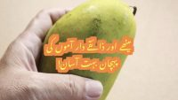 Ways to pick sweet mangoes